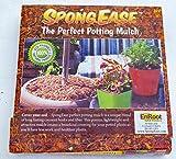 SPONGEASE Coco Fiber Mulch - 5 Quart for