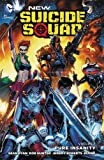 New Suicide Squad Vol. 1: Pure Insanity (The New 52)