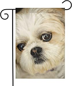 YangXiH Shih Tzu Little Dog Garden Flag House Yard, Seasonal Banner with Vivid Color and UV Fade Resistant for Outdoor/Indoor Home Decor Party and Garden Yard Decorations,12''x18''
