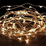 Micro 100 Warm White LED Starry Lights Plug In on 32 Ft Long Silver Ultra Thin String Wire [NEWEST VERSION] , Power Adaptor Included, Perfect For Creating Instant Appeal in Any Setting - Christmas Parties, Bedrooms, or an Intimate Environment Anywhere in the Home, Waterproof LEDs, 100% Products Satisfaction Guarantee