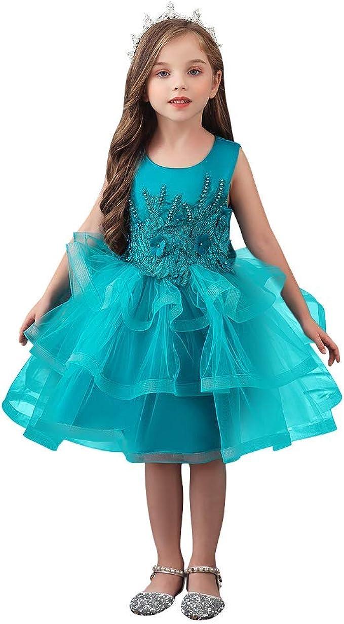 Kinder Blumenmädchen Partykleid Prinzessin Tüll Tutu Spitze Hochzeit Abendkleid