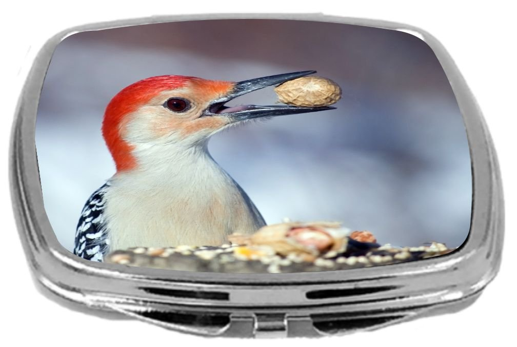 Rikki Knight Red Bellied Woodpecker Eating Peanut Design Compact Mirror, 17 Ounce