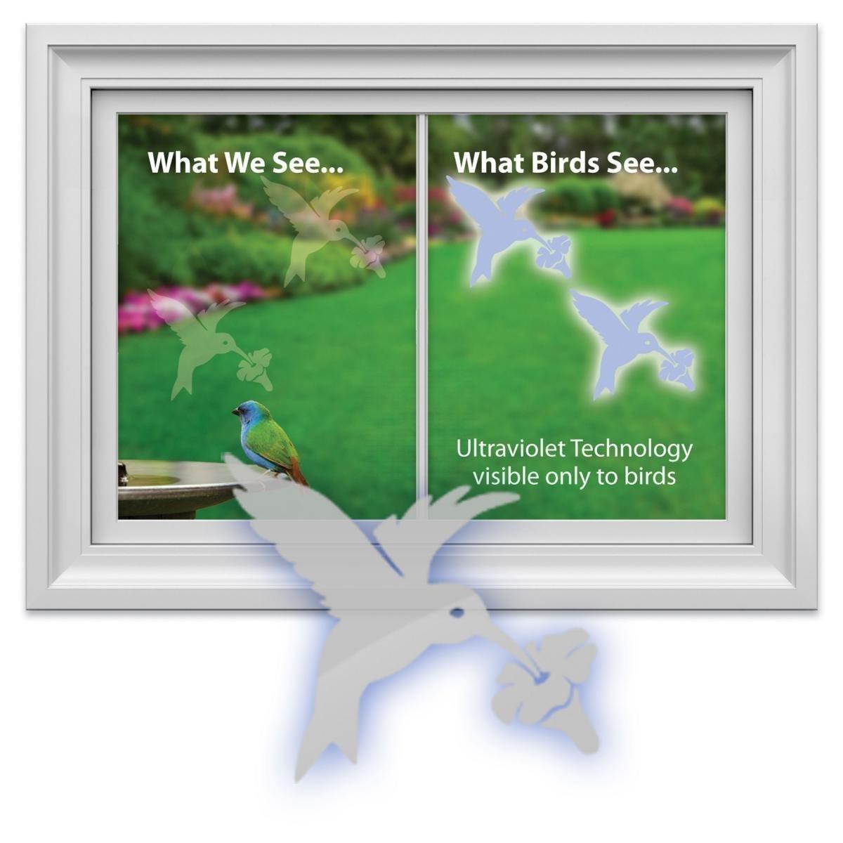 Window Alert Hummingbird Decals Amazon Custom Vinyl Decals - Window alert hummingbird decals amazon