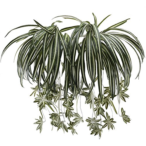 HUAESIN 2pcs Realistic Chlorophytum Hanging Spider Plant Silk Green Verigated Spider Plant Hanging Greenery Leaf Plant for Indoor Hanger Pot Wall Living Room Kitchen decor by HUAESIN