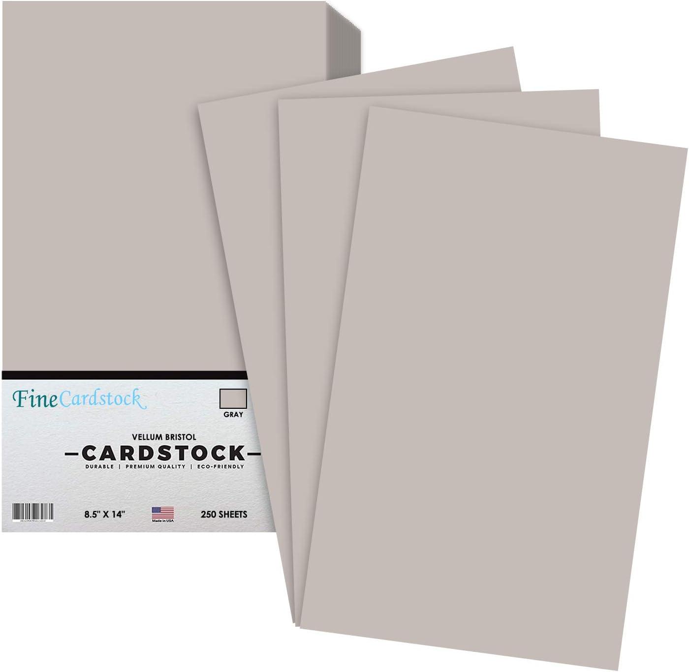 Pastel Blue Menu Legal Size 8.5 x 14 Inches 67 Vellum Bristol Lightweight Card Stock Paper Cover 1 Ream of 250 Sheets Per Pack