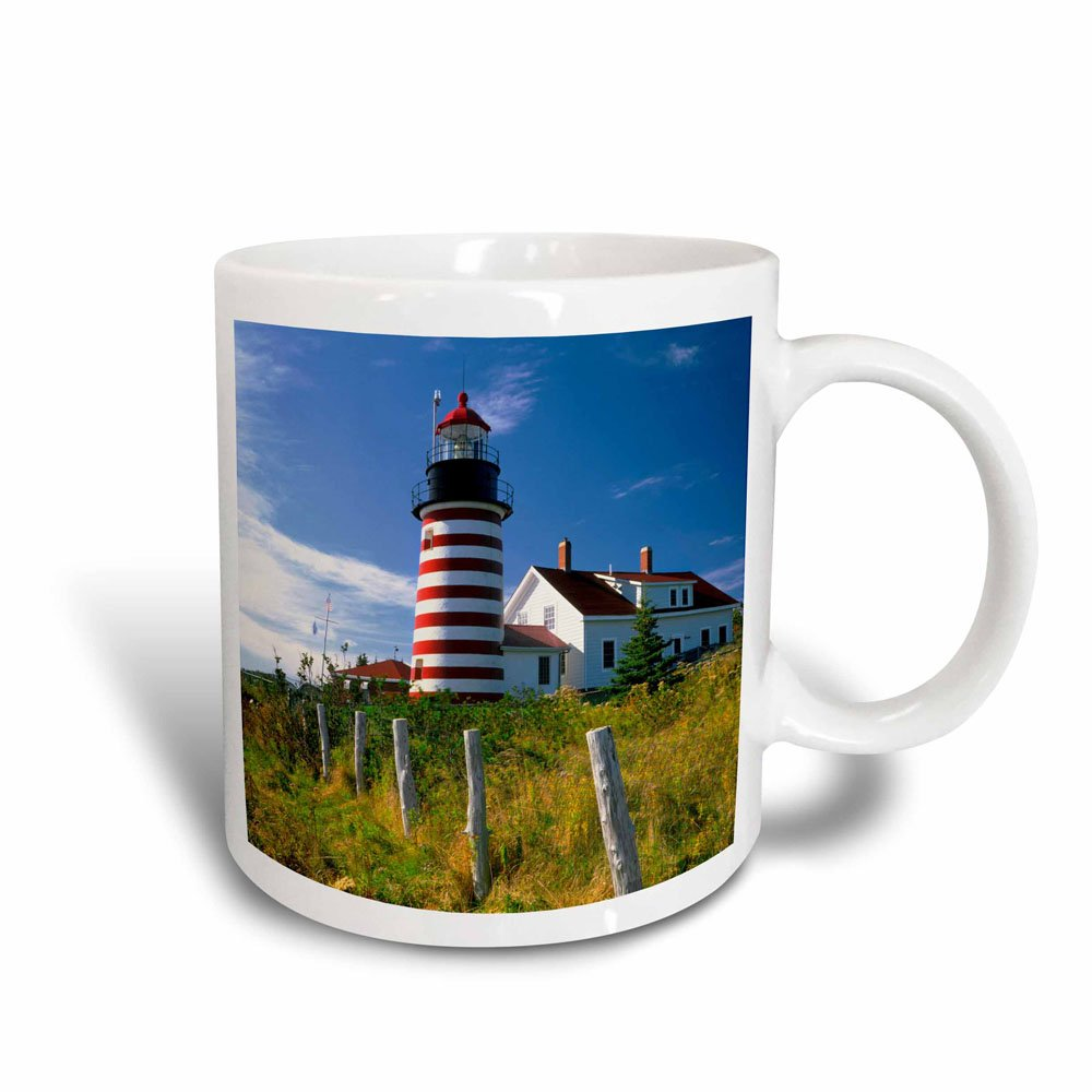 Buy 3drose Maine Lubec West Quoddy Head Lighthouse Magic Transforming Mug 11 Ounce Online At Low Prices In India Amazon In