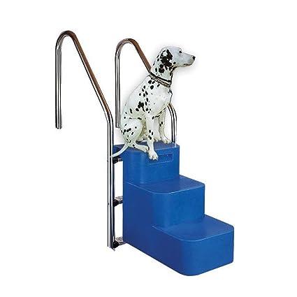 Escalera para perros piscinas interrate