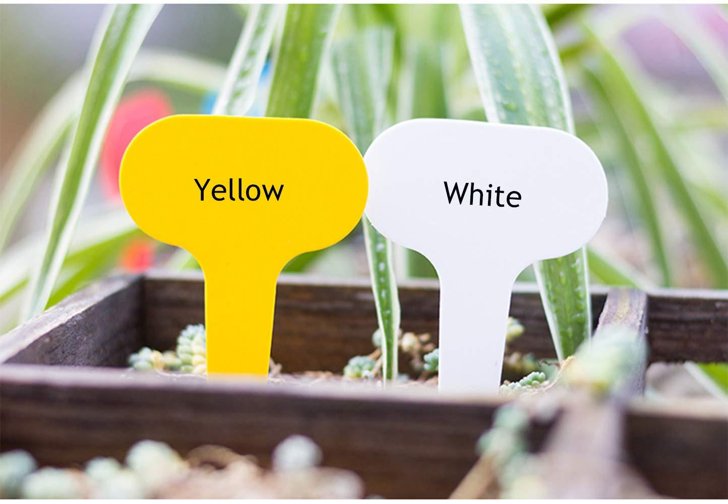 6 Colors 600Pcs 5x7CM Multicolored Plastic Plant Nursery Garden Tags Kalolary Waterproof T-Type Labels Markers Re-usable Plant Labels