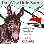 The Wise Little Burro: Holiday Tales From Near and Far | Joe Hayes