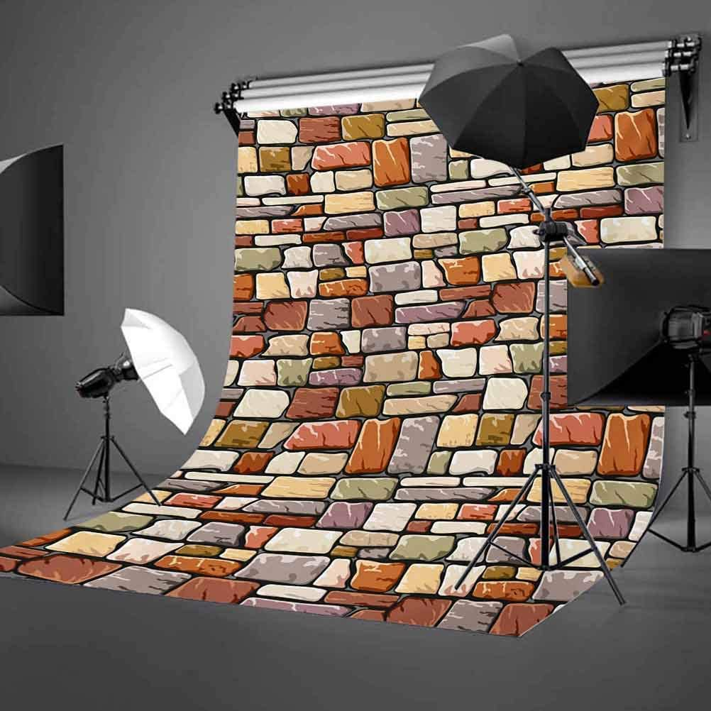 Grunge 10x12 FT Photo Backdrops,Cartoon Wall Pattern with Stone Motifs Construction Architecture Inspired Design Background for Photography Kids Adult Photo Booth Video Shoot Vinyl Studio Props