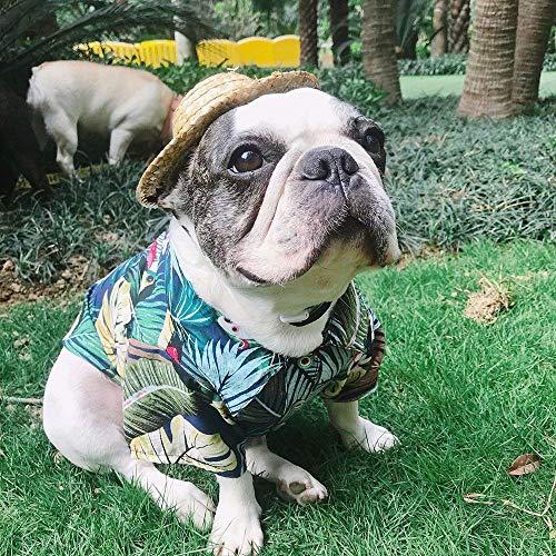 LO HOME Hawaiian Pet Dog Polo T Shirts Summer Puppy Clothes Hawaiian Breeze Seaside Resort Style French Bulldog Pug Beachwear (M, Blue)