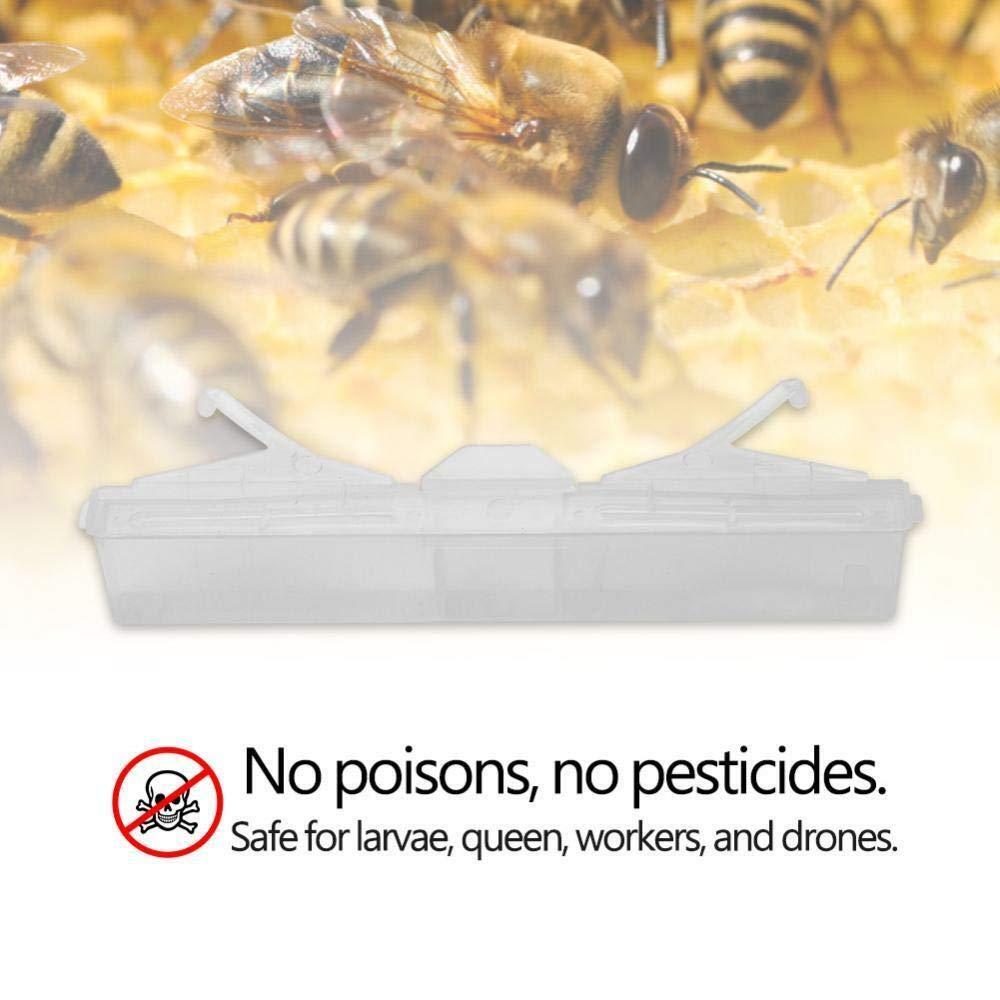 10X Hive Beetle Trap No Poison Pesticides Beekeeping Tool Baitable Reusable 1