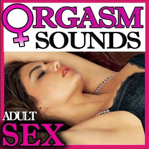 Pamila anderson having sex sounds
