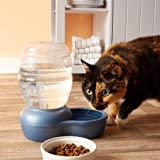 Petmate Replendish Gravity Waterer with Microban