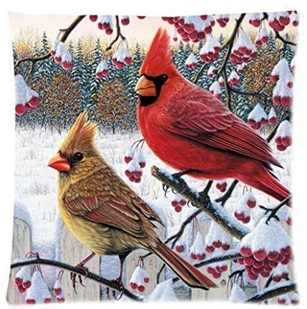 BabysSJ Funny winter cardinal Birds Zippered Pillow Pillow Case