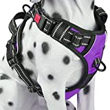 PoyPet No Pull Dog Harness, Reflective Vest Harness with 2 Leash Attachments and Easy Control Handle(Purple,L)