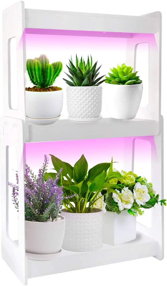 Indoor Herb Garden with LED Grow Light, Kitchen Garden with Timed Auto Shut Off, Low Safe Voltage, Ideal for Succulents Plant Grow, DIY Decoration, 2 Layers