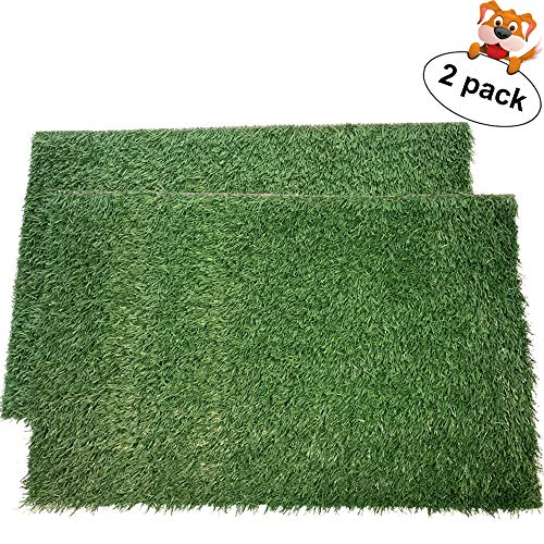 LOOBANI Dog Grass Pee