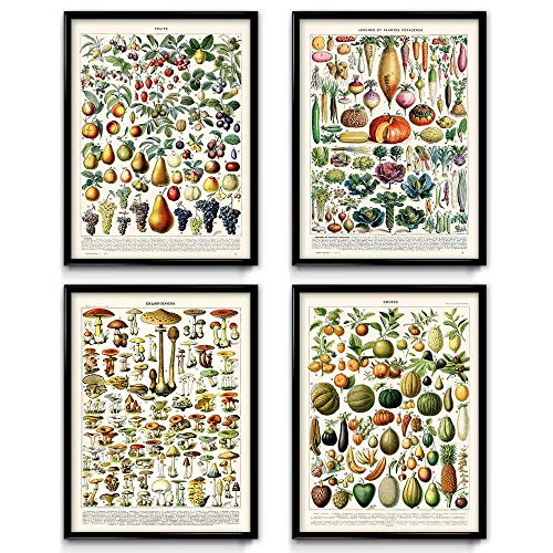 - Vintage Farmhouse Wall Art Prints | Rustic Botanical Garden Kitchen Decor | 4 Piece Set | Unframed 8x10, 12x16, 16x20 Food Prints | by Larousse - Printed by Orion Wells VP1033-16 x 20 in