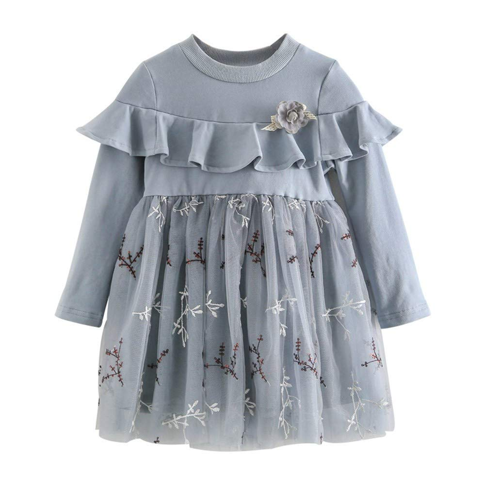 Dream Room Dresses Toddler Infant Kids Baby Girls Ruffles Embroidery Dress Formal Casaul Outfits Clothes