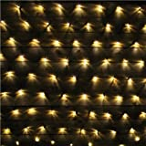LightsGo® Net Fairy Lights Outdoor Indoor LED Fairy Lights 320LEDs 3m*2m Warm White/Cool White (Warm White)