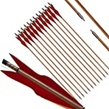 "PG1ARCHERY Archery Bamboo Arrows, 32 inch Traditional Hunting Practice Target Arrow 5"" Turkey Feathers Fletching Recurve Bow"