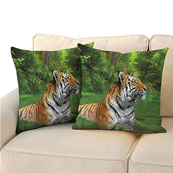 Amazon.com: Clayee Home Funda de cojín para sofá, funda de ...