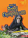 img - for Meet a Baby Chimpanzee (Lightning Bolt Books Baby African Animals) book / textbook / text book