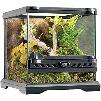 Amazon Com Exo Terra Nano Glass Terrarium Reptile Habitat 8 X 8