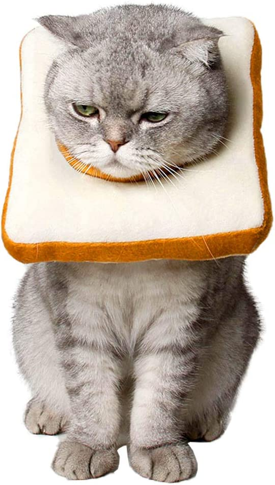 Soft Edge for Kitten and Cats Cute Toast Neck Cone After Surgery Amakunft Adjustable Cat E-Collar Wound Healing Protective Cone Bread Surgery Recovery Elizabethan Collars