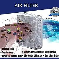 Box Fan Filter, Microfiber Fan Filter, 20 Inch Box Fan Filter Including Velcro tabs, 60 Day Filtration (Set of 2): Box Fan Not Included