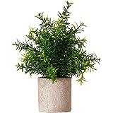 Plantas artificiais em vaso da Yardwe Mini plantas de eucalipto falsas decorativas para decoração de plantas de bonsai decora