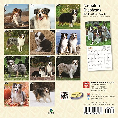 Australian Shepherds 2018 Small Wall Calendar Photo #3