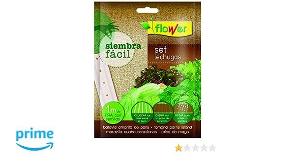 Flower 51165 51165-Siembra fácil lechugas, No aplica, 19x2x19 cm ...