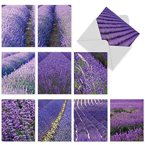 - 10 Blank Note Cards with Envelopes 4 x 5.12 inch, Assorted 'Lavender Fields forever' Stationery, Beautiful All-Occasion Greeting Cards for Weddings, Baby Showers, Thank Yous - NobleWorks M2017