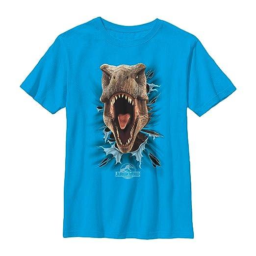8140eba8b Amazon.com: Jurassic World Boys' T. Rex Rip T-Shirt: Clothing