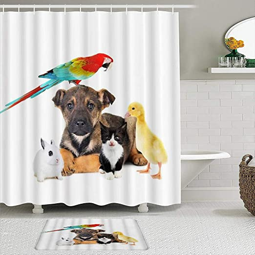Amazon Com Vamix Shower Curtain Sets With Non Slip Rugs Animals Dog Cat Rabbit Parrot Duck Cute Pets Portrait Shiny Tame Small Fluffy Waterproof Bath Curtains Hooks And Bath Mat Rug Included Home Kitchen