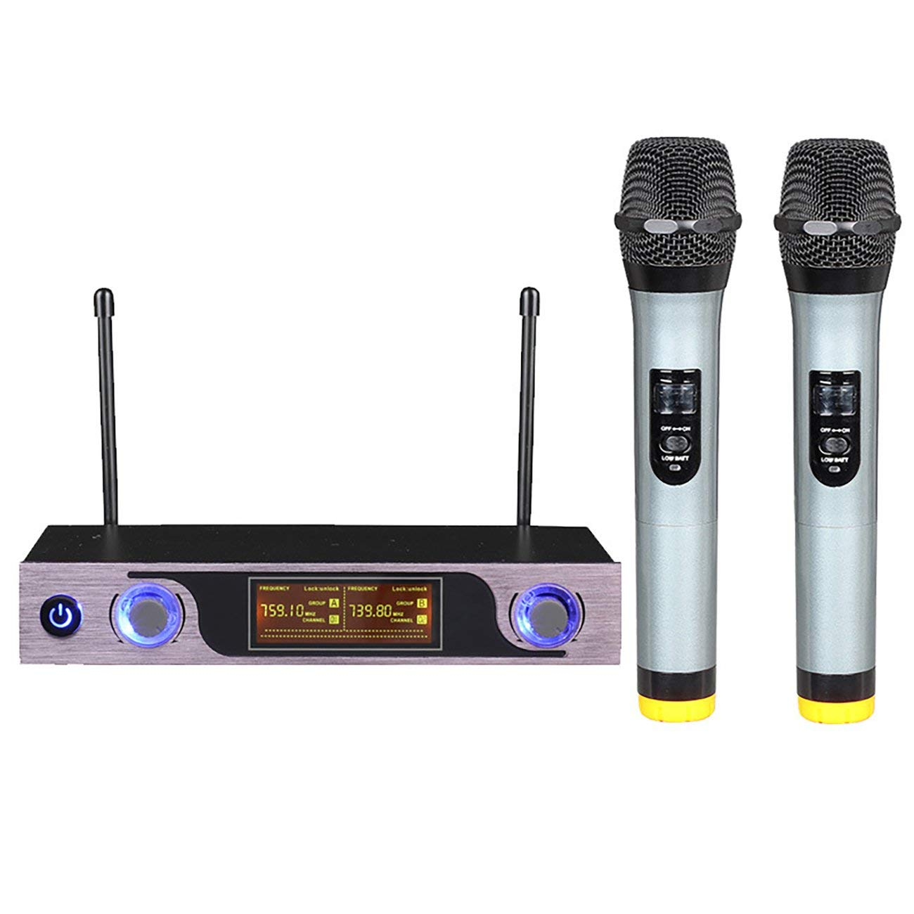 Socialism Professionelles Dual-Funkmikrofonsystem Bühnenauftritte Funkmikrofon Dynamisches Handheld-Funkmikrofon