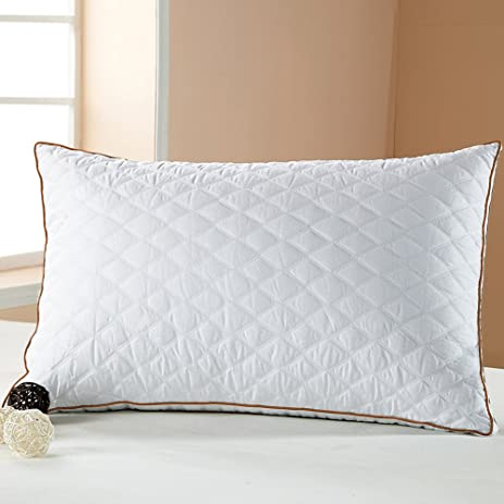 beegod Bed Pillow, Better Sleeping, Super Soft & Comfortable Antibacterial  & Anti-mite