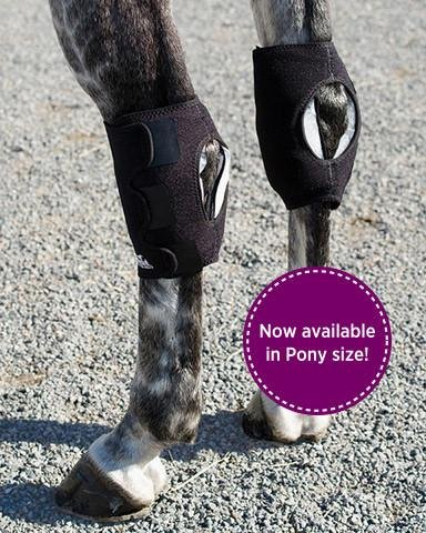Ice Horse Pair Hock Wraps for Equine Therapy - Comes with 6 Ice Packs by Ice Horse