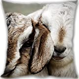 HARLAN couple beautiful lambs Custom Zippered Leaning Cushion 50x50cm(20x20inch) Large Size 600g(1.32lb) (Twin sides Print)