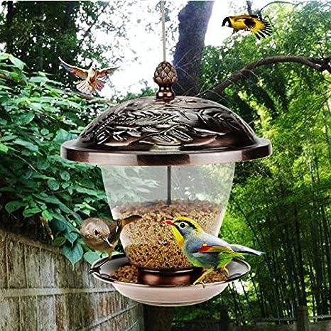 DLH Comedero para Pájaros, Comedero para Pájaros - Comedero para Pájaros De Jardín - Contenedor De Comida para Pájaros - Comedero Colgante: Amazon.es: Deportes y aire libre