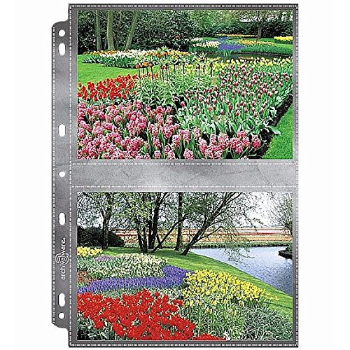 Lineco Polypropylene Photo Album Pages, 8.75 X 11.125 inches, Holds 5 X 7 inch Photos, Pack of 25 (AW24913-25) by Lineco