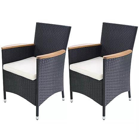 WEILANDEAL Conjunto de 2 sillas de Jardin Poli Ratan ...