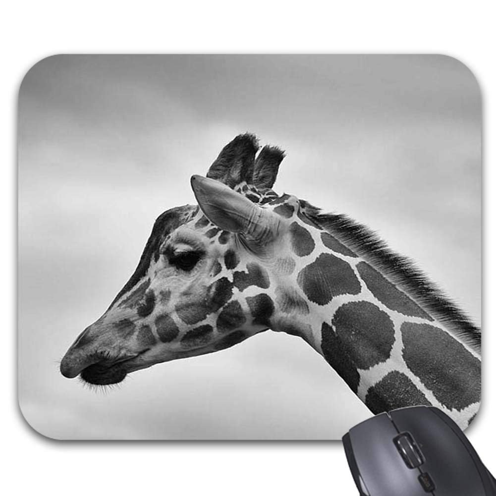 Amazon com black and white photography giraffe family mouse pads stylish office accessories9 x 7 5 inch office products