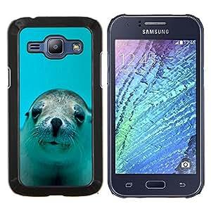 KLONGSHOP // Cubierta de piel con cierre a presión Shell trasero duro de goma Protección Caso - LINDO FELIZ LEÓN DE MAR DEL PERRO - Samsung Galaxy J1 J100 //