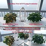 Cnlight Air Sterilizer Lamp, UV Sterilizer, Light
