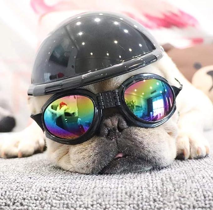 Amazon.com: ShopTrend - Sombrero para mascotas para ...