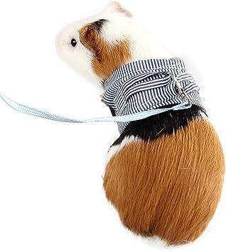 Adnikia - Juego de arnés y Correa para Mascotas pequeñas, sin ...