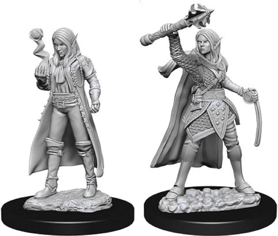 Nolzurs Marvelous Miniatures Wizkids D/&D Female Half-Elf Monk WZK73839